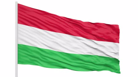 3d seamless looping of the Hungary flag waving in the wind. Alpha mask included