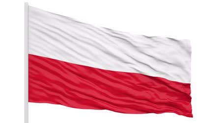 lengyelország : 3d seamless looping of the Poland flag waving in the wind. Alpha mask included