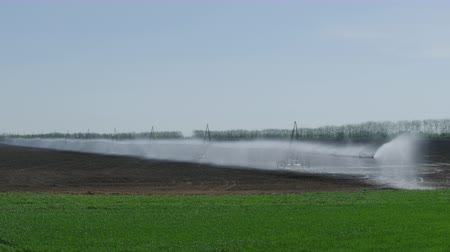 locsolás : Automatic Irrigation Of Agriculture Field, At Spring