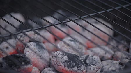 briquette : Barbecue Smoker for smoke roasting. BBQ Grill and glowing coals. Stock Footage