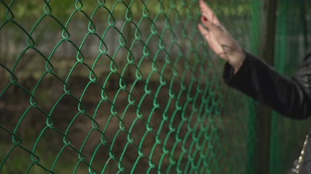 płot : hand holding wire mesh fence,woman hand with wire mesh close up.