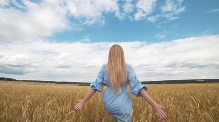 seventeen : A young girl in a blue dress is standing in the field, and the wind is fluttering her hair