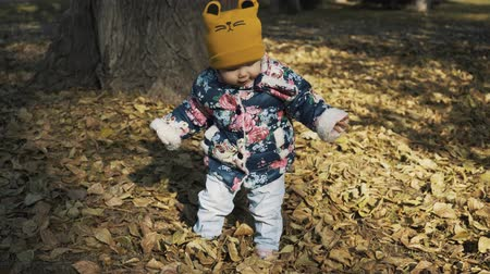 hravý : Baby in the forest. Falling autumn leaves.