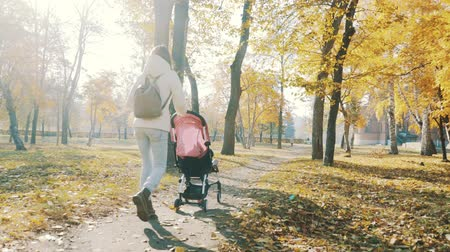 Mother Walking with a Baby Pram in the Autumn Park. Love and Family Concept.