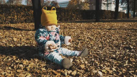 Little cute girl playing with leaves in autumn park. Wideo