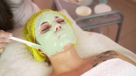 alternatif tıp : Beautiful brunette getting a facial treatment at the health spa