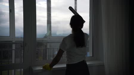 biscate : the girl is engaged in washing Windows in the apartment Stock Footage