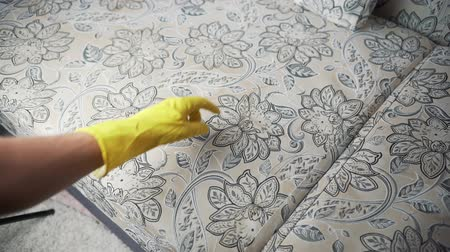 ionizing : Cleaning fabric of the sofa with a steam cleaner.
