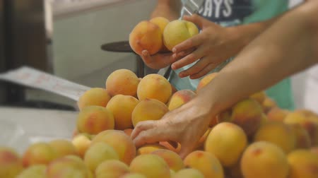 produce market : Hands choosing and picking peaches at fruit and vegetable rural market