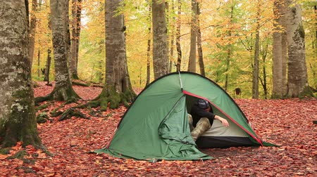 equipamentos esportivos : adventurer wakes up in the camp