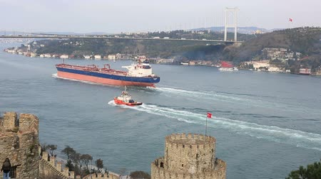 importação : container ship passing under the bridge Vídeos