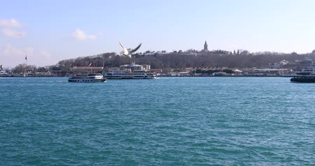 orientale : Passenger ships and boats cruising over Bosporus