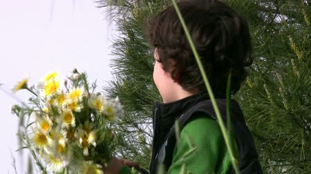 bitki : Happy Little boy picking the flowers