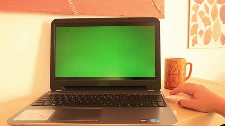 zahmetsiz : Woman working with  green screen Choma-key laptop monitor
