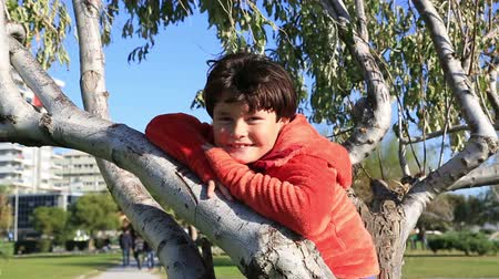 travessura : Happy young boy  sitting on the tree
