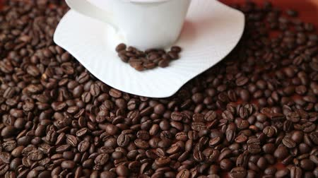coffee brewing : Coffee cup with coffee beans