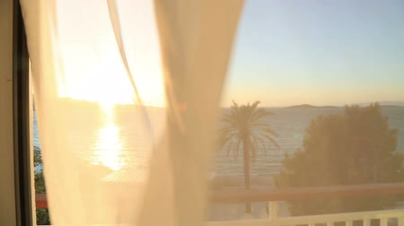 erkély : View of the sea and palm tree from a hotel room