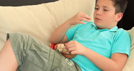 nogueira : Portrait of a young preteen boy lying on sofa watching television and eating healthy snack