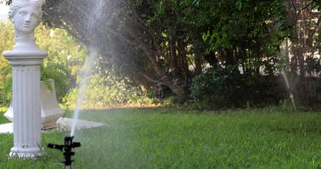 arrosage automatique : Garden sprinkler during watering the green lawn on a sunny summer day