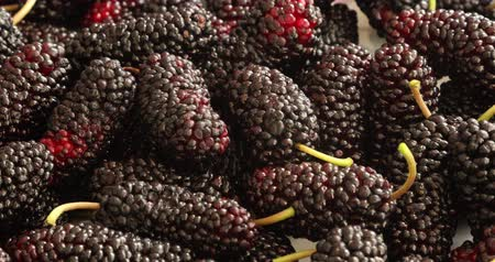 dut : Black mulberries heap in dish