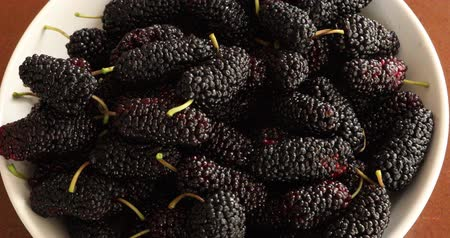 antioksidan : Black mulberries heap in dish