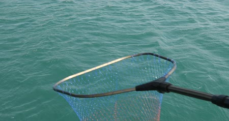 Volunteer collecting plastic garbages on sea with landing net