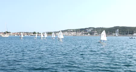 transporte acuatico : Optimist sailboat during a training at sunny summer day Archivo de Video
