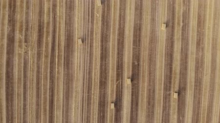 Česká republika : Aerial view on harvest field, square straw bales, technique to climb up with rotation