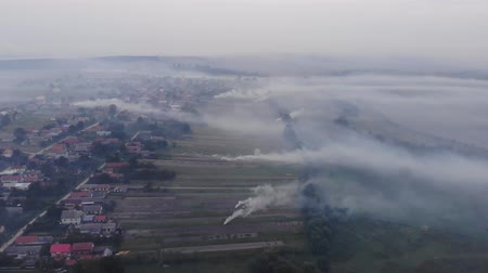 surroundings : Burning weeds on the field, smoke, damage to environment, atmospheric pollution. Autumn time, rural area, Ukraine