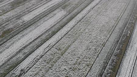 agro : Aerial view of fields are covered with snow. Winter time Stock Footage