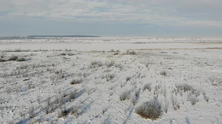 Aerial view of snowy steppe, countryside landscape. Land overgrown with shrubs and weeds. Smooth fly forward
