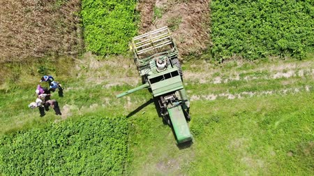 Drohobych, Ukraine - 04 July, 2018: Combine harvester John Deere 935 threshing wheat on the field. Editorial Use Only