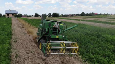 reaping : Drohobych, Ukraine - 04 July, 2018: Combine harvester John Deere 935 threshing wheat on the field. Editorial Use Only