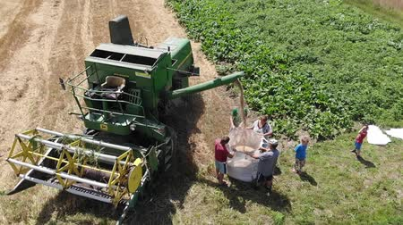 reaping : Drohobych, Ukraine - 04 July, 2018: Aerial view of combine harvester winnowing wheat into big bag held by people. Harvesting, countryside. Slow motion