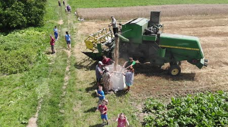 combinar : Drohobych, Ukraine - 04 July, 2018: Aerial view of combine harvester winnowing wheat into big bag held by people. Small children have fun. Harvesting, countryside. Slow motion. Editorial Use Only