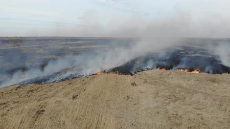 rendkívüli : Aerial view of burning dry grass in the field. Disaster and emergency events. Drone 4K Stock mozgókép