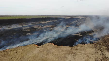 Aerial view of burning dry grass in the field, fly forward and down. Disaster and emergency events