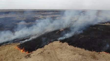 Aerial view of burning dry grass in the field, fly forward and down. Disaster and emergency events, negative impact on nature