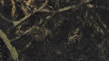 ekolojik : Aerial view of burned field. Top view with climb up and pan technique