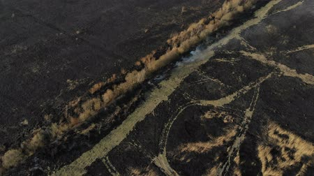 Aerial view of burned field, fly forward. Disaster and emergency events, atmospheric pollution Стоковые видеозаписи