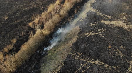 tilt : Aerial view of burned field, burning of dry grass. Fly back and tilt technique. Harm the environment