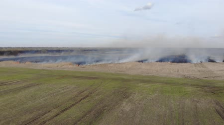 charred : Flying straight ahead over burning field. Fire and smoke, black charred land. Emergency. Drone 4K