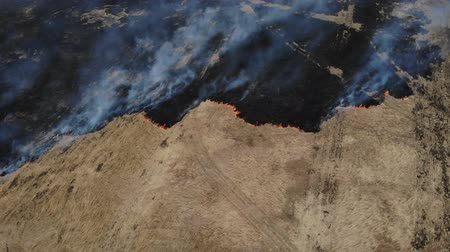 вред : Dry grass and vegetation burns on the meadow, Arson, Negative impact on nature
