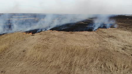Aerial drone view of burning grass and plants in the field