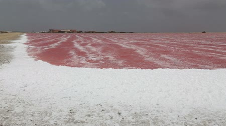 sůl : rose caribbean salt lake