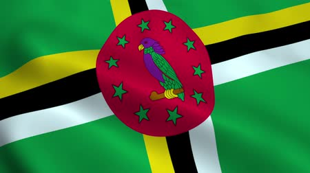 east timor : Realistic Dominica flag Stock Footage