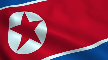 north korean flag : Realistic North Korea flag Stock Footage