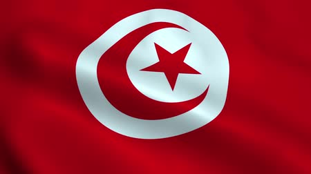 marrocos : Realistic Tunisia flag