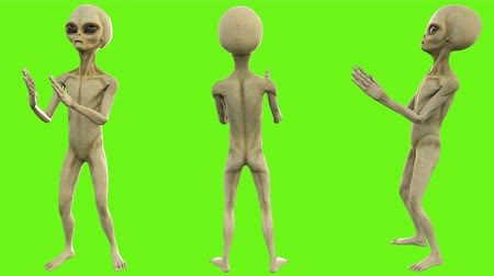 olhos verdes : Alien clapping. Loopable animation on green screen. 4k. Stock Footage