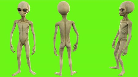 olhos verdes : Alien talks. Loopable animation on green screen. 4k.